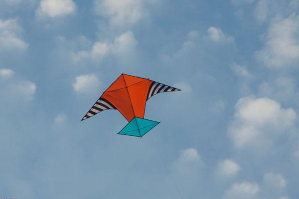 Class Rockaway Scalar Kite Oregon Kitemakers Retreat
